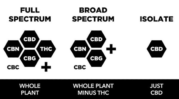 Differences-between-Full-Spectrum-CBD-Broad-Spectrum-CBD-and-CBD-Isolate